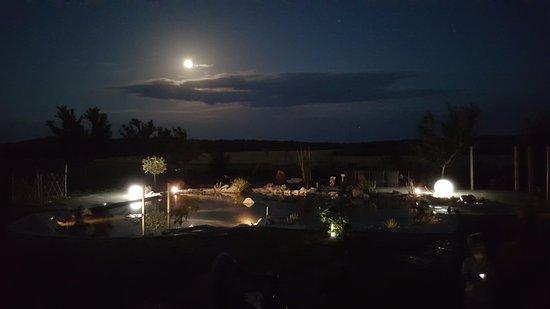 L'Edénière de Crist'AL : Clair de Lune sur le bassin naturel