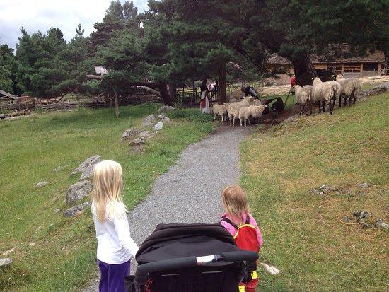 Upplands-Väsby, Svezia: photo1.jpg