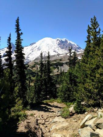 Ashford, WA: View of Mt. Rainier