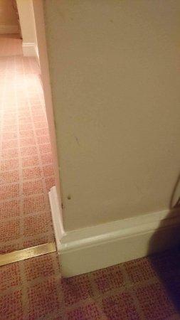 Macdonald Swan's Nest Hotel: photo2.jpg