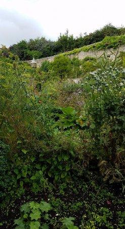 Culross, UK: The actual garden