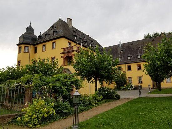 Oestrich-Winkel, Almanya: 20170803_095004_large.jpg