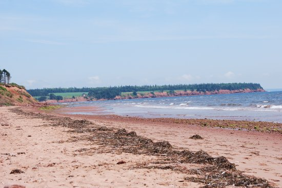 Montague, Canada: secluded beach
