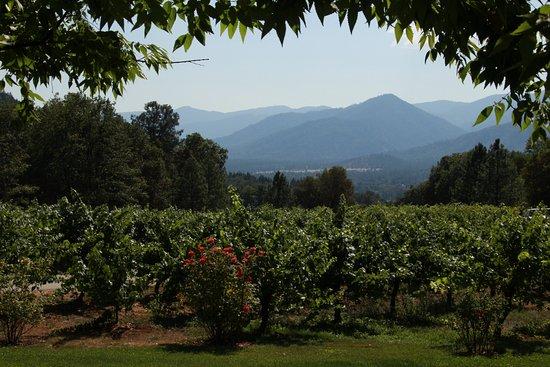Ashland, Oregón: Wooldridge Creek Winery