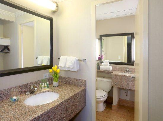 Holiday Inn Binghamton - Hawley St/Downtown: Guest Bathroom