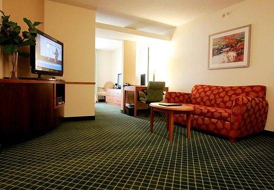 เซาท์บอสตัน, เวอร์จิเนีย: One-Bedroom Suite