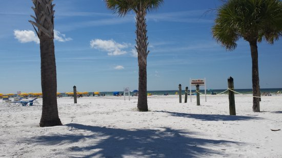 Sea Crest Apartments on Siesta Key : View of the Beach from the private beach area