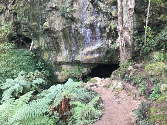 Waipu, New Zealand: photo5.jpg