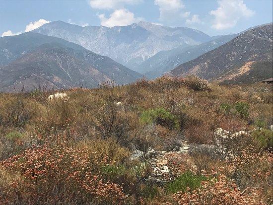 Rancho Cucamonga, CA: photo2.jpg