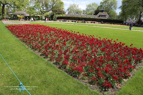 Victoria Embankment Garden London Picture Of Victoria Embankment
