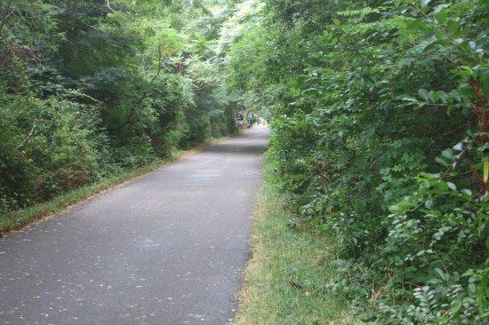 Cape Cod Provincelands Trail : Cape Cod Trail
