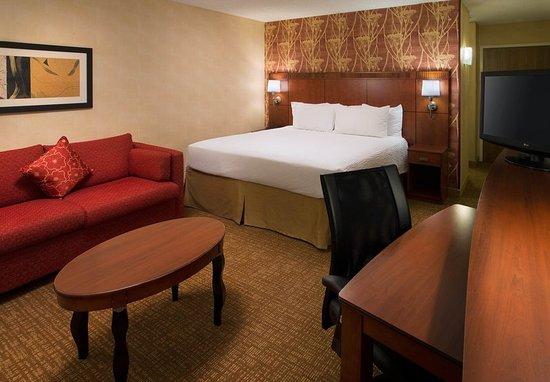 Pleasanton, Californië: King Guest Room