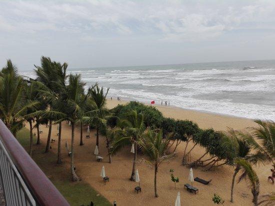 Panadura, Sri Lanka: IMG_20170729_160010_large.jpg