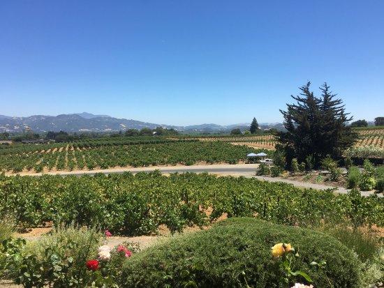 Geyserville, Californien: photo1.jpg