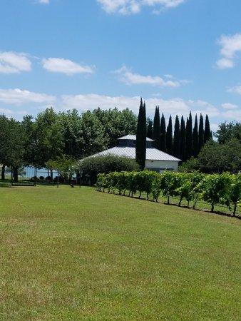 Spicewood, Teksas: Member's Area