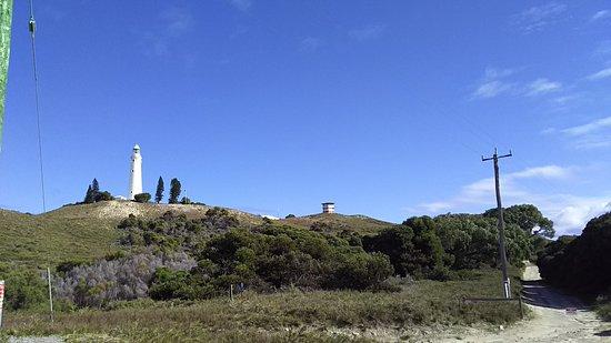 Rottnest Island, Australien: DSC_0349_large.jpg