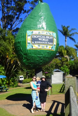 Duranbah, Australia: It used to be called Avacado Land.