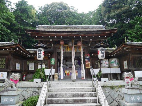 Ritto, Japan: 大野神社の本殿