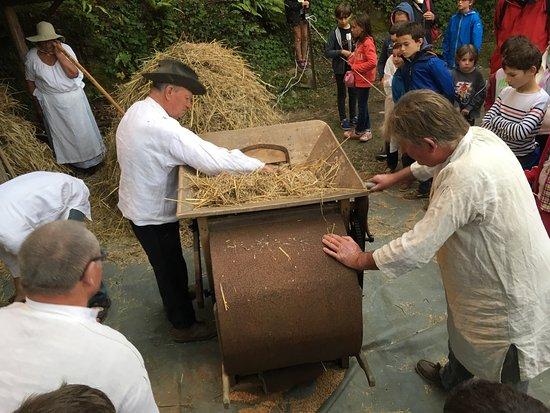 La Vicomte-sur-Rance, France: Quelques photos du battage traditionnel du blé, du nettoyage et du moulin à marrée.