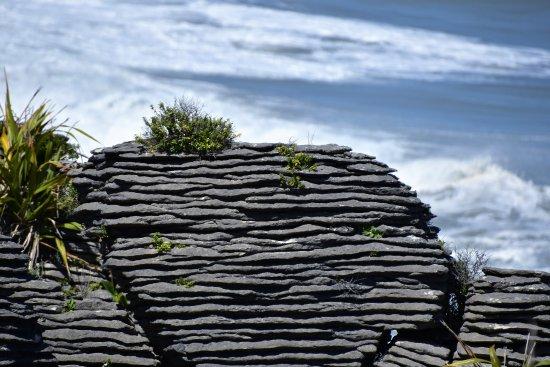 Punakaiki, Nieuw-Zeeland: The Pancake Rocks