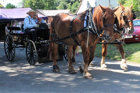 Middle Week Horse Drawn Services