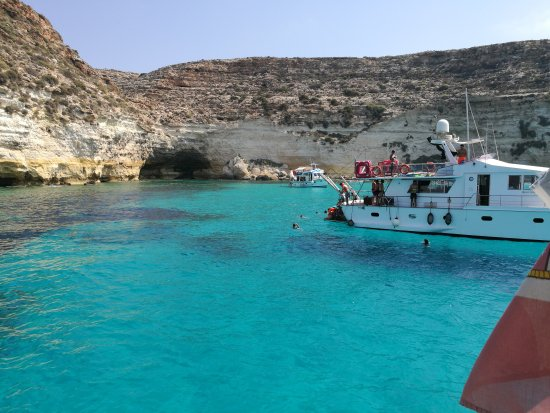 Barca Luidietta