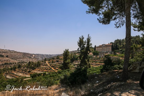 Beit Jala, Palestinian Territories: View of monastery and surrounding grape vines and olive groves