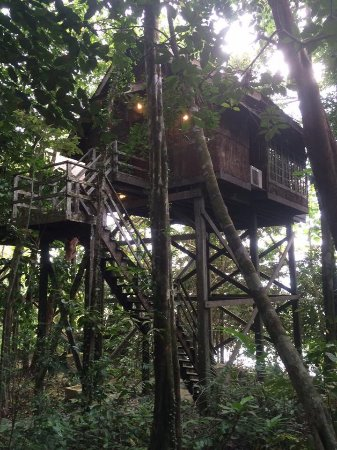 Permai Rainforest Resort: photo0.jpg