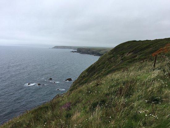 SW Coast Path Around Mullion.
