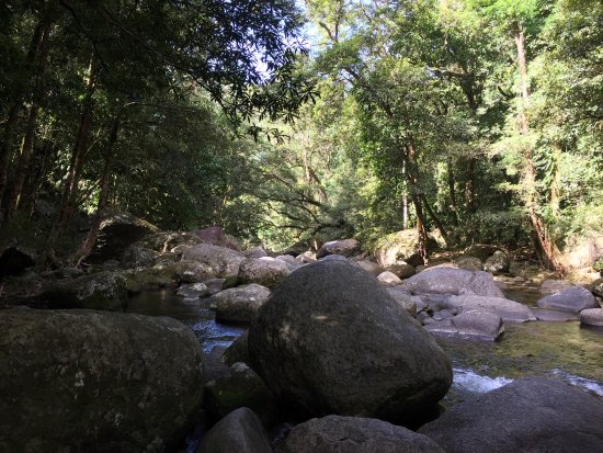 Daintree Region, Australia: photo0.jpg