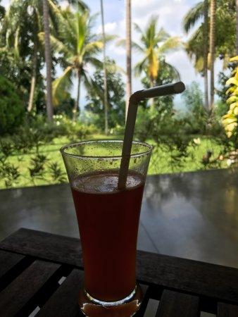 Kegalle, Sri Lanka: Drinks on the verandah