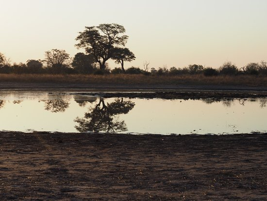 North-West District, Botswana: One of the many waterholes