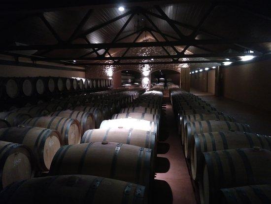 Roa, España: IMG_20170810_133226_large.jpg