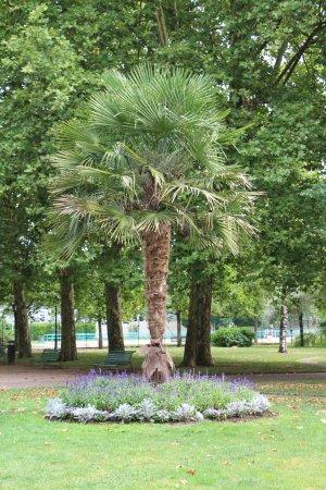 Jardin anglais de vesoul aktuelle 2017 lohnt es sich for Jardin anglais guingamp
