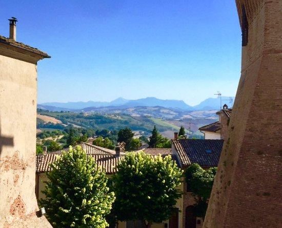Mondavio, Italia: Vista delle colline marchigiane dal torrione della Rocca Roveresca