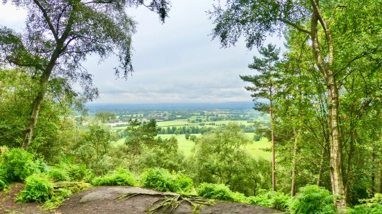 Alderley Edge, UK: view