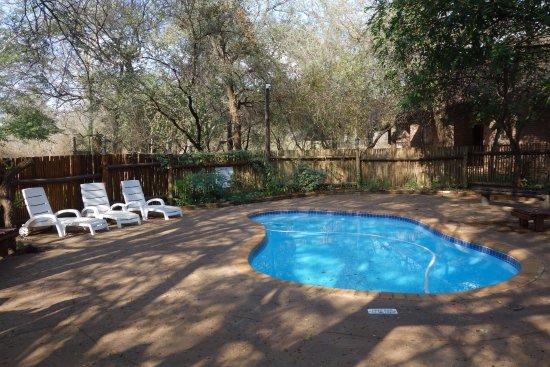 Marloth Park, Νότια Αφρική: Het zwembad