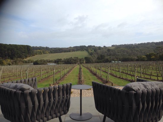 Mornington Peninsula, Australia: Wine Time Tours