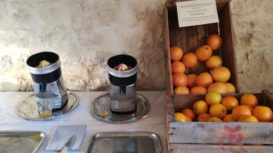 Château d'Arpaillargues : orange ou pamplemousse pour jus de fruit frais