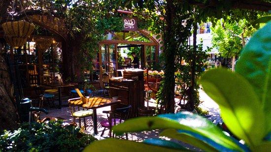 Cafe Greek Garden Hours