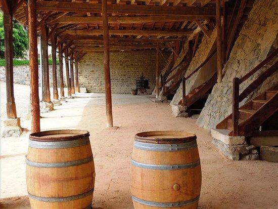 Quincie-en-Beaujolais, Frankrike: Château de Varennes