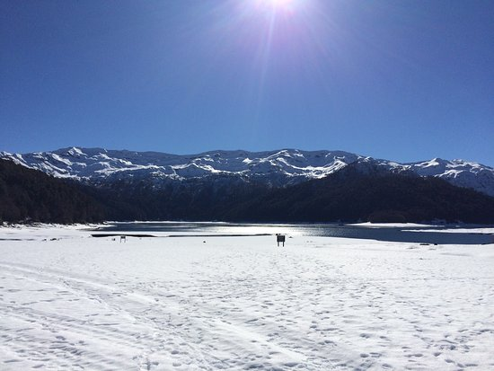 Conguillio National Park : photo1.jpg