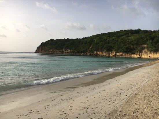 Halcyon Cove by Rex Resorts : photo9.jpg