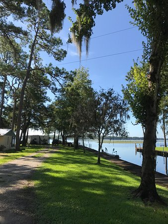 Buddy's Lakeside RV Park: Views around the RV park