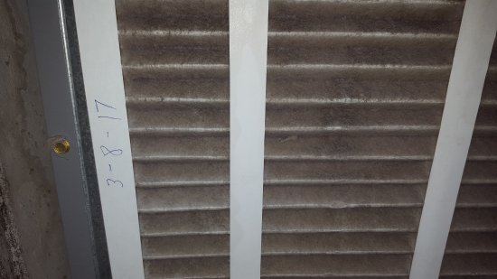 Reef Club: incredibly dirty furnace filter with claim it was just replaced