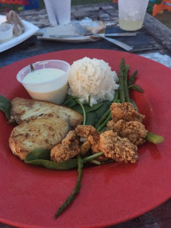 Obr zok red fish blue fish pensacola beach for Red fish blue fish pensacola