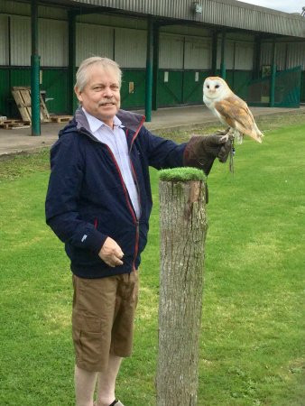 Warner Leisure Hotels Alvaston Hall Hotel: Falconry experience