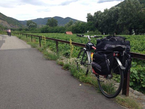 Rent a Bike Passau Bikeambulanz