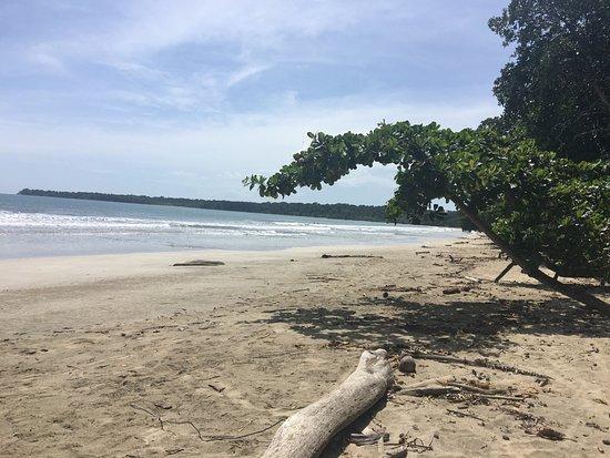 Puerto Viejo Beach : photo5.jpg