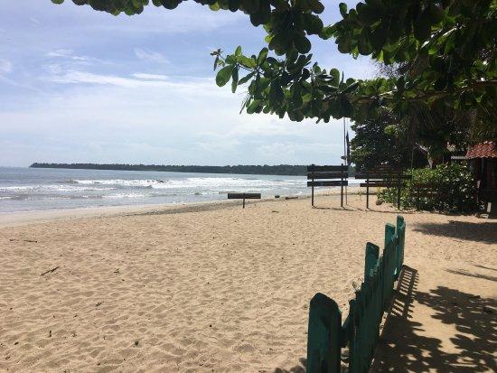 Puerto Viejo Beach : photo6.jpg